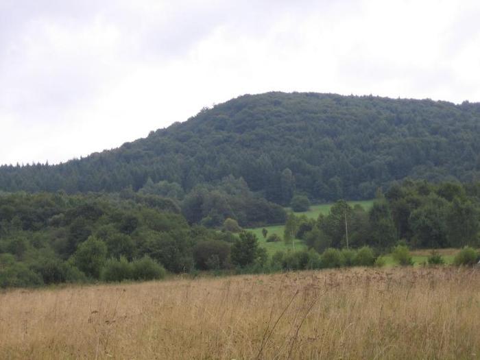 Wysowa Zdrój położona jest w rozległej kotlinie otoczonej wzgórzami Beskidu Niskiego