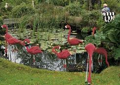 Różowe flamingi można oglądać podczas Legosafari