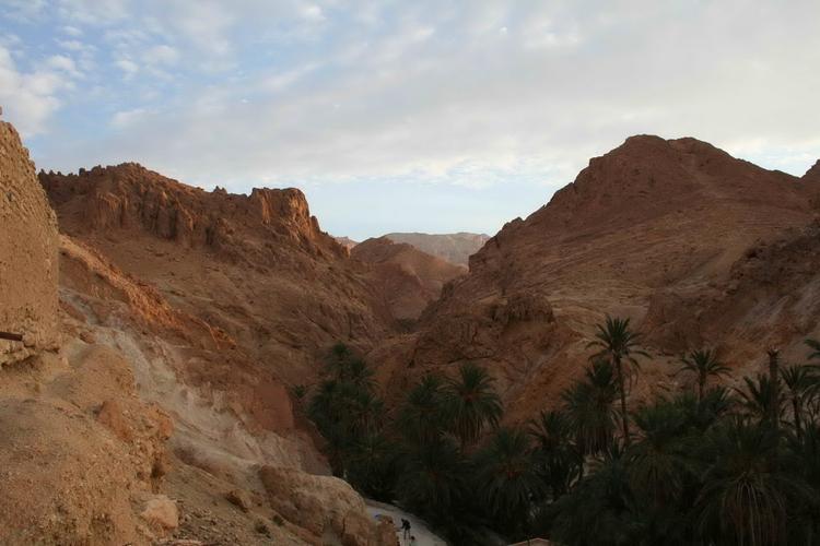 Oaza-Sahara
