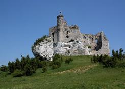 Zamek w Mirowie. Ten sam właściciel co w Bobolicach. Może kiedyś zostanie odnowiony.