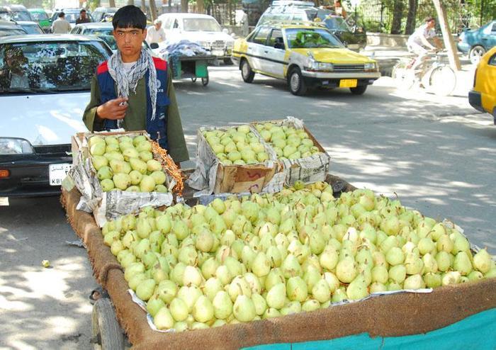 sprzedawca gruszek w Kabulu