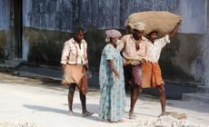 Cochin, Indie