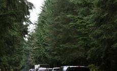 Okolice Mt Rainier, Washington. Korek na drodze po zejściu lawiny.