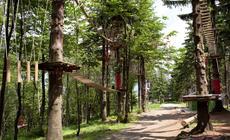 W Ustroniu są dwa parki linowe: jeden na szczycie Czantorii, drugi na Równicy