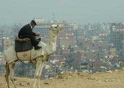 Policjant na wielbłądzie patrolujący okolice piramid w Gizie, w tle Kair