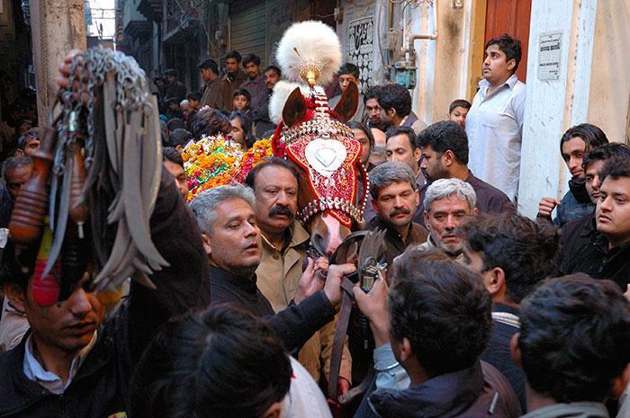 Zuljaneh - koń symbolizujący wierzchowca imama Husajna. Autor: Olgierd Nowicki/vagabunda.net