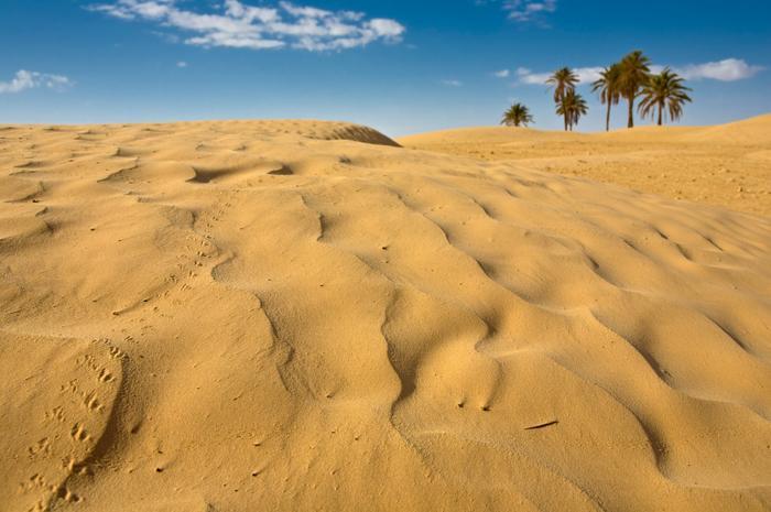 Sahara, Tunezja