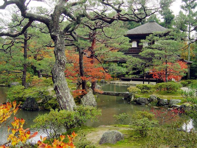Jesień w Kyoto
