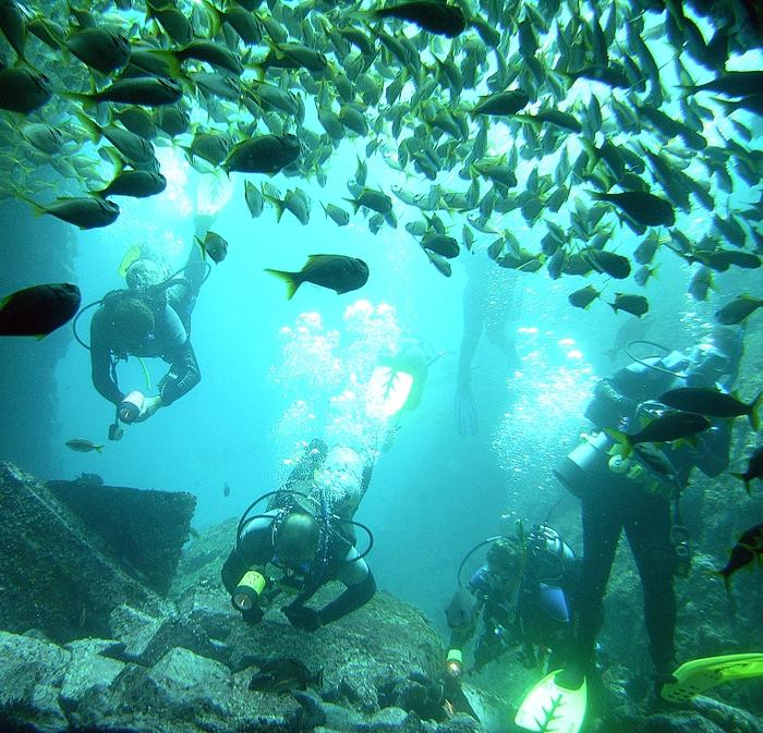 Rafy Koralowe w Australii