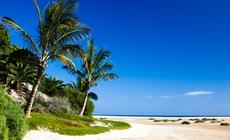 Wyspy Kanaryjskie: Plaża na wyspie Fuerteventura