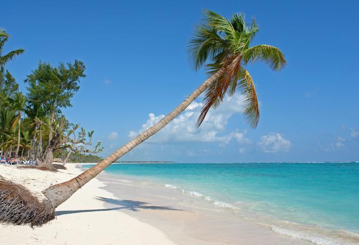 Pomysł na walentynki: leniuchowanie pod palmami