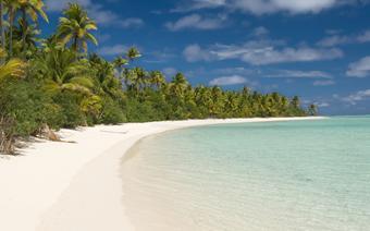 Palmy kokosowe porastające plaże na wyspie Aitutaki