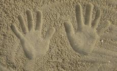 plaża w wilanowie