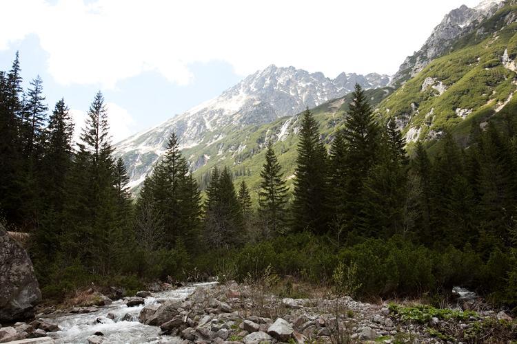 Potok Roztoka wypływa z Wielkiego Stawu i nieopodal Wodogrzmotów Mickiewicza wpada do Białki