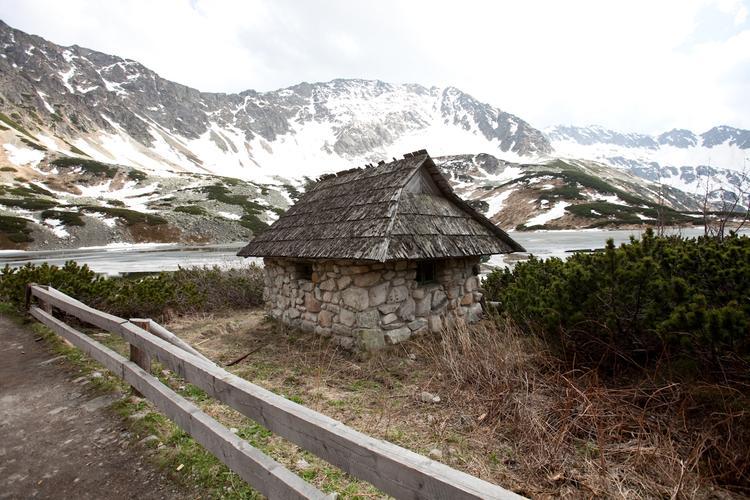 Ze względu na wysokość (1700m n.p.m.) w Dolinie Pięciu Stawów dominiuje roślinność wysokogórska, a zwłaszcza słynna tatrzańska kosodrzewina