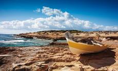 Leniwym spacerom wzdłuż morza towarzyszą przepiękne widoki i możliwość przyjrzenia się wielu gatunkom roślin