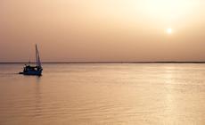 Rezerwat Przyrodniczy Rzeki Formosa w Algarve