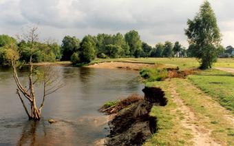 Pejzaż Mazowsza