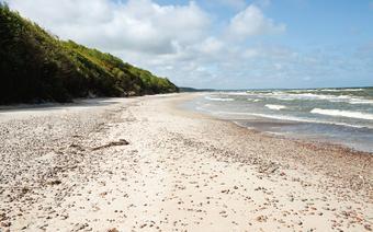 Na plażę w Poddąbiu, małej miejscowości pomiędzy Ustką a Rowami, schodzi się z wysokiej zalesionej skarpy
