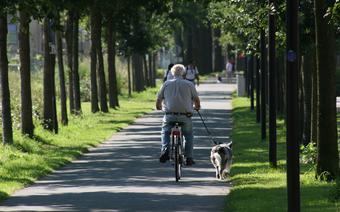 Podróże seniorów