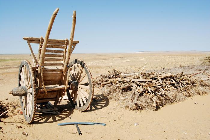 Trasa wiedzie przez pustynie Uzbekistanu...