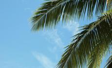 Żimowa oferta TUI to głównie wycieczki na tropikalne plaże