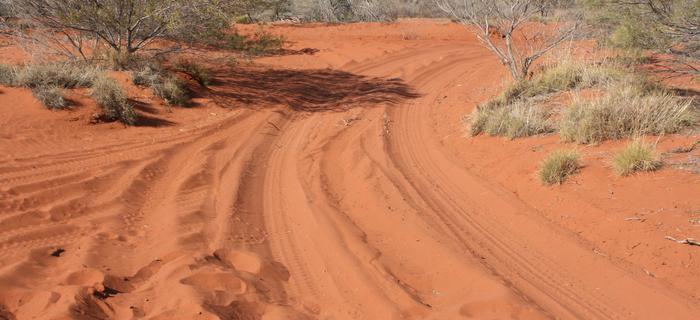 Przeprawa wózkiem przez pustynię Gibsona