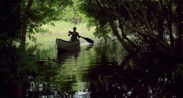 """Kadr z filmy """"Mangrove"""" wyświetlanego podczas festiwalu"""