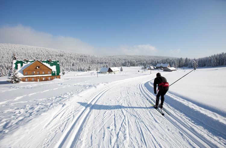 Narty biegowe w Polsce