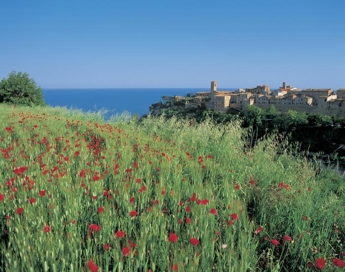 Region Marche dosłownie tonie w kwiatach