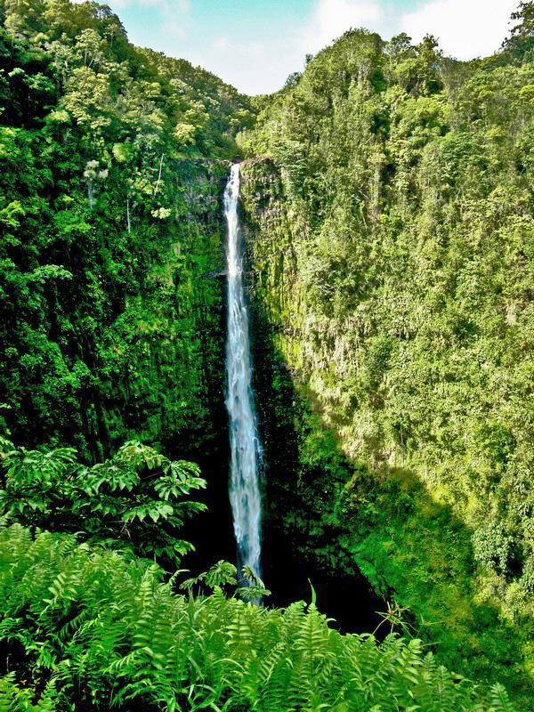 Hawaje. Narodziny stanu Aloha