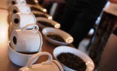 Święto Herbaty, Cieszyn