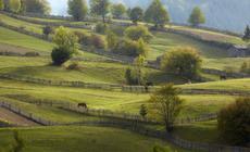 Na łagodnych zboczach rozciągają się pastwiska, pola uprawne i sady