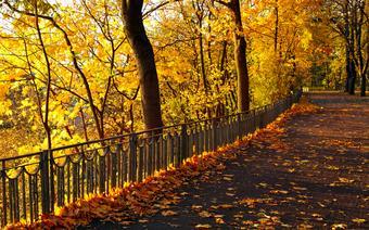 jesień pogoda