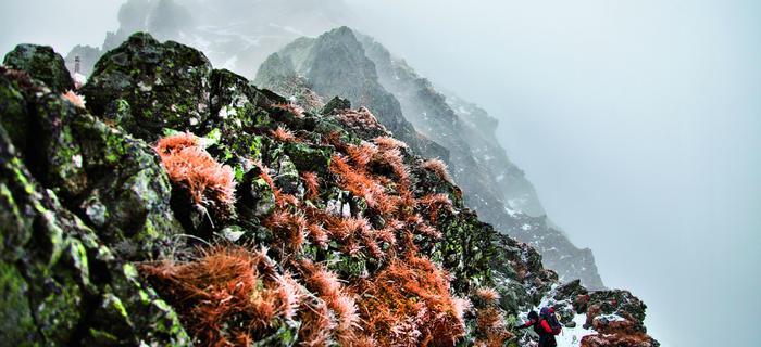 Zejście z Przełęczy Szpiglasowej do Doliny Pięciu Stawów