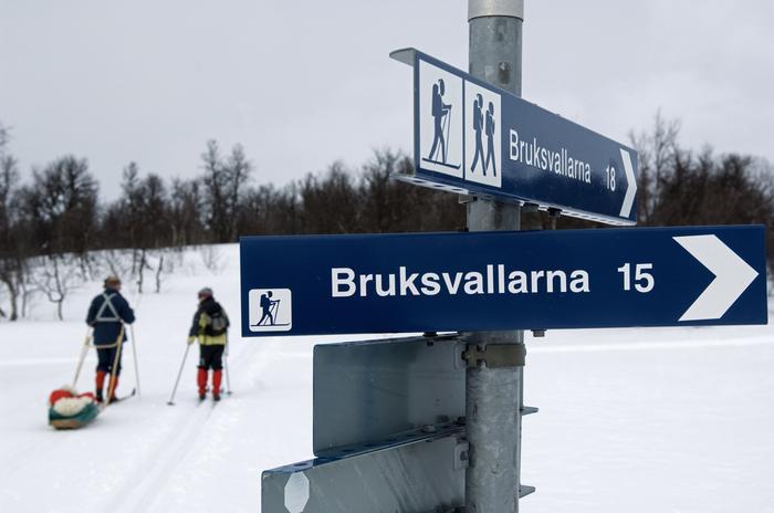 Narty biegowe w Szwecji