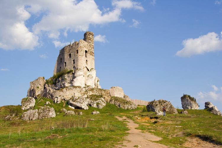 Szlak Orlich Gniazd: Zamek w Mirowie