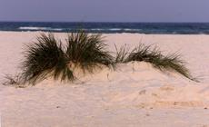 Bornholm, plaża