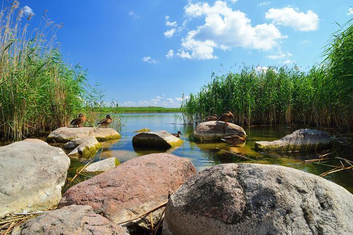 Jeziora w Polsce: Śniardwy