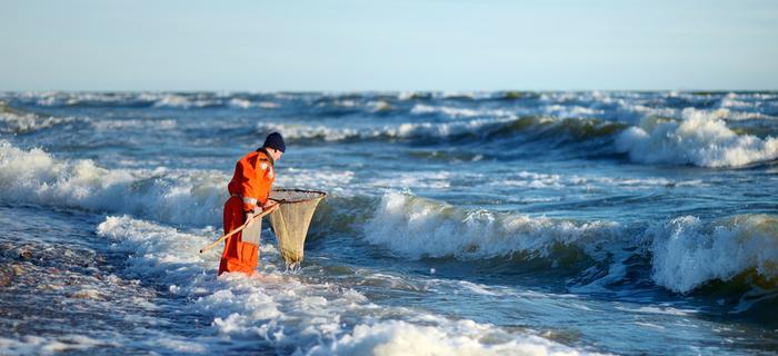 Poławiacz bursztynu