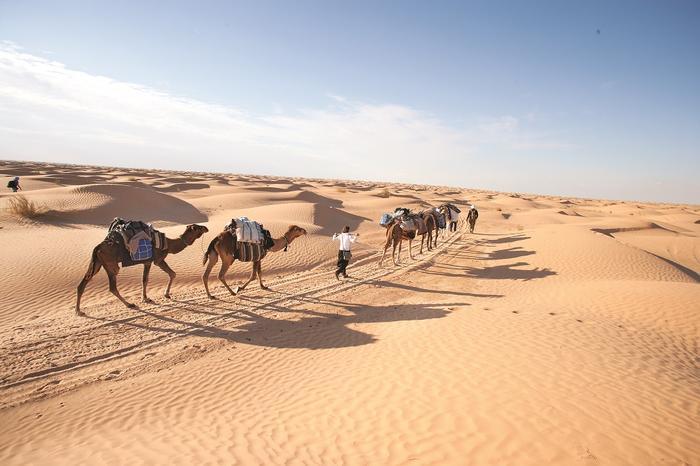 Dziennie pokonywaliśmy ok. 10 km. Wydaje się niedużo, ale wędrówka przez pustynię to całkiem spore wyzwanie