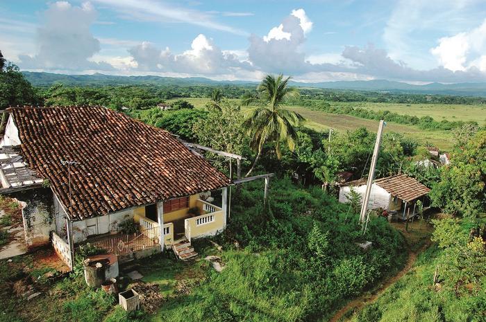 Dawne plantacje trzciny w Dolinie Cukrowni. Gospodarka wyspy uzależniona była od produkcji cukru