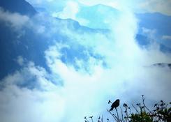 Pośród mgieł kanionu Colca
