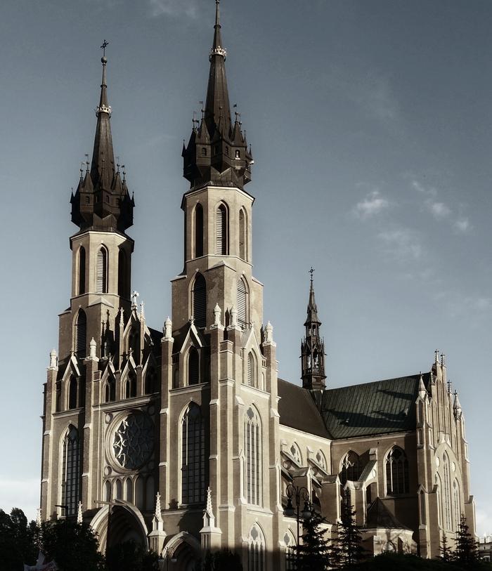 Katedra w Radomiu