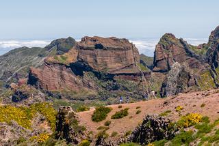 Madera- wyspa kwiatów i wiecznej wiosny