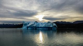 Kraina lodu- dryfujący odłam lodowca