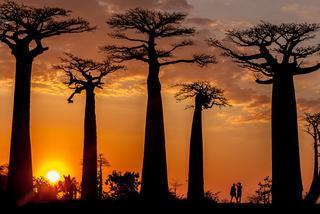 Madagaskar-magiczna kraina uśmiechniętych ludzi