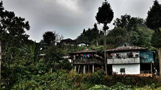 Domy na pograniczu z dżunglą