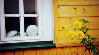 W żółtym domku