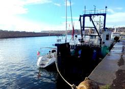 Port Safi, już po pierwszym etapie z Agadiru. Jedyny jacht w tym porcie od wielu miesięcy.